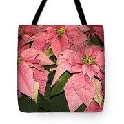 Pink Poinsettias Close-up Tote Bag