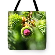 Pink Point Tote Bag