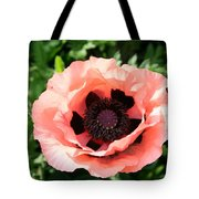 Pink Poppy Bloom Tote Bag