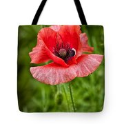 Pink Poppy Flower Among The Green Background Tote Bag