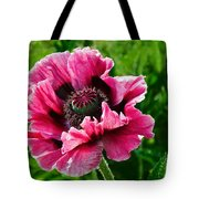 Pink Poppy Tote Bag