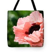 Pink Poppy Today Tote Bag