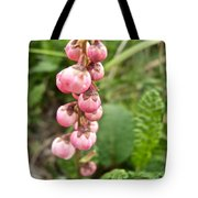 Pink Pyrola On Alpine Tundra Trail By Eielsen Visitor's Center In Denali Np-ak Tote Bag