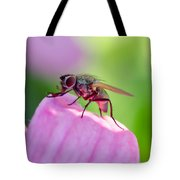 Pink Reflection On Flies Body. Tote Bag