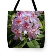 Pink Rhododendron In Sunshine Tote Bag