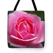 Pink Rose 08 Tote Bag