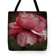 Pink Rose And Raindrops Tote Bag by Patricia Strand