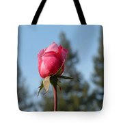 Pink Rose And Trees Tote Bag