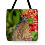 Pink Rose Butterfly Tote Bag