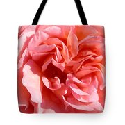 Pink Rose Closeup Tote Bag