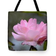 The Last Rose Tote Bag