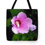 Pink Rose Of Sharon 2 Tote Bag