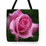 Pink Rose Perfection Tote Bag
