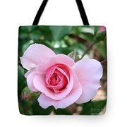 Pink Rose - Square Print Tote Bag