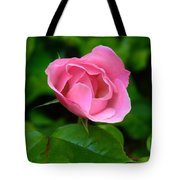 Pink Rose Volunteer Tote Bag