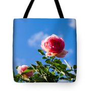 Pink Roses - Featured 3 Tote Bag
