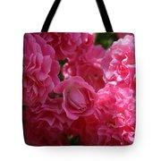 Pink Roses In Sunlight Tote Bag