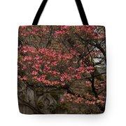 Pink Spring - Dogwood Filigree And Lace Tote Bag by Georgia Mizuleva