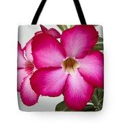 Pink Star Flower Tote Bag