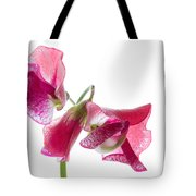 Pink Sweet Pea 2 Tote Bag