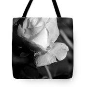 Pink Tea Rose 01 - Infrared Tote Bag
