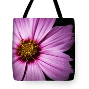 Pink Tickseed  Tote Bag