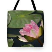 Pink Tilt... Tote Bag