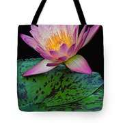 Pink Tipped Beauty Tote Bag