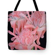 Pink Torch Ginger Trio On Black - No 2 Tote Bag