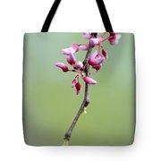Pink Tree Flower Buds Tote Bag