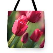 Pink Tulip Dream Birthday Card Tote Bag