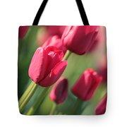 Pink Tulip Dream Tote Bag