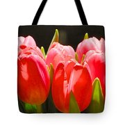 Pink Tulips In A Row Tote Bag