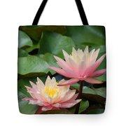 Pink Water Lilies Tote Bag