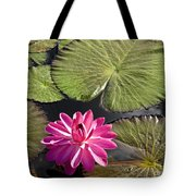 Pink Water Lily II Tote Bag