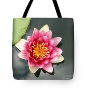 Pink Waterlily And Cloud Reflection Tote Bag