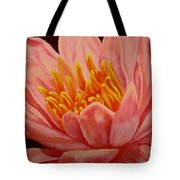 Pink Waterlily Tote Bag