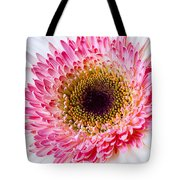 Pink White Daisy Tote Bag