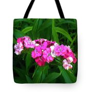 Pink Willie Tote Bag