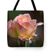 Pink Yellow Rose 01 Tote Bag