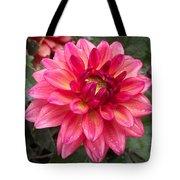 Pink Zinnia Flower Tote Bag