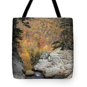 Pinkham Notch - Fm000105 Tote Bag