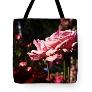 Pinks And Reds Tote Bag