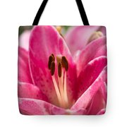 Pinky Swear - Featured 3 Tote Bag