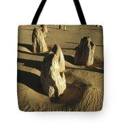 Pinnacles In Nambung National Park Tote Bag