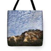 Pinnacles Of Fraser Island Tote Bag by Linda Lees