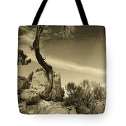 Pinon Pine Tote Bag