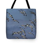 Pintado Petrel Flock Flying Antarctica Tote Bag