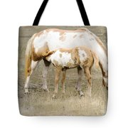 Pinto Mare And Filly Tote Bag