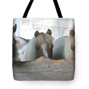 Pinto Party Tote Bag